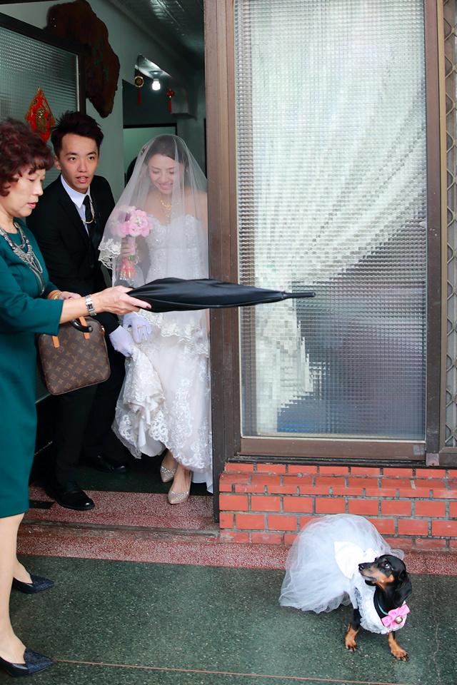台北婚攝小游@新竹家欣樓 瑜與婷婚禮紀錄 饅頭爸團隊0928_Blog_062.jpg